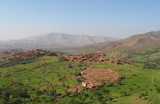 berbere